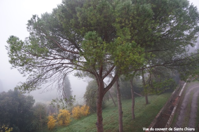 06 San Miniato