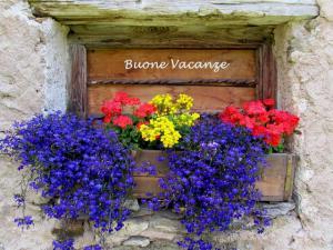 Buone vacanze a25213889
